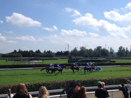 Green Turf Racetrack