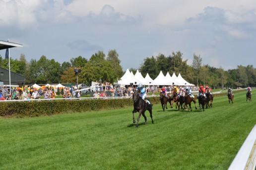Green Turf Horse Racing