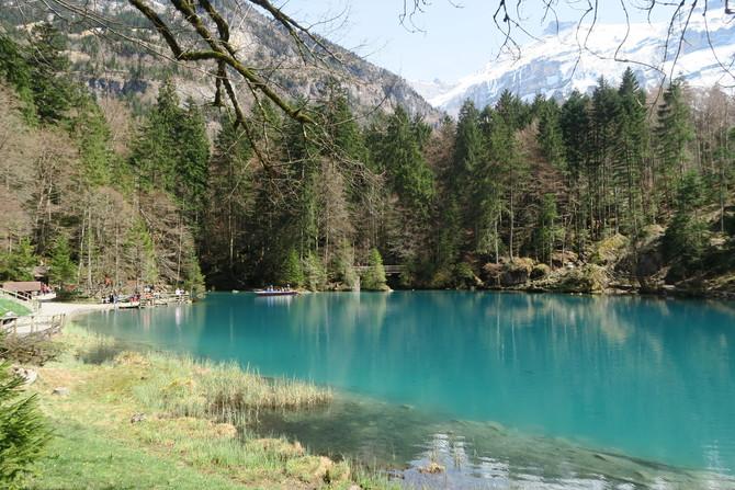 Blausee Switzerland12