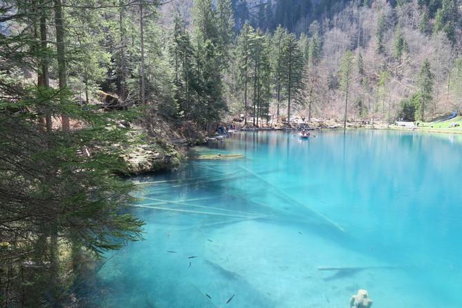 Blausee Switzerland18